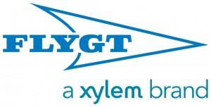 Xylem_7704